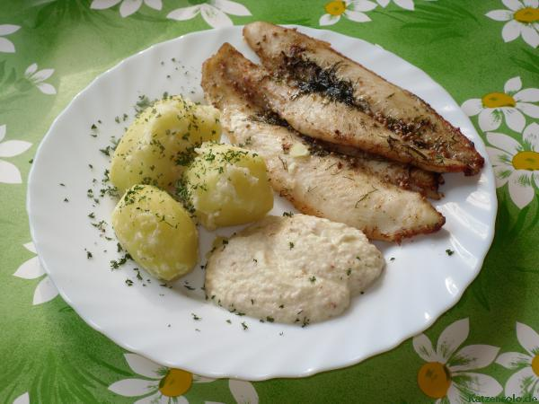 Pangasius vom Blech
